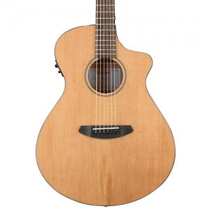 Breedlove Pursuit