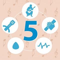 5 lecciones formulario